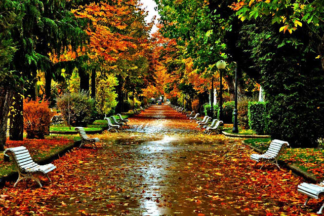 Soria - Parque de la Alameda de Cervantes