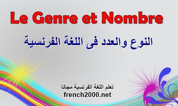 النوع والعدد فى اللغة الفرنسية
