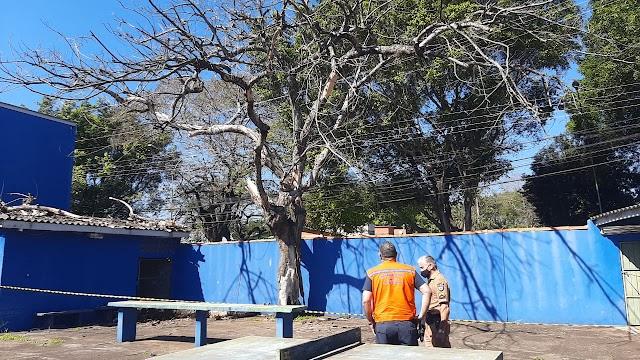 Defesa Civil possui equipe exclusiva para situações emergenciais com árvores