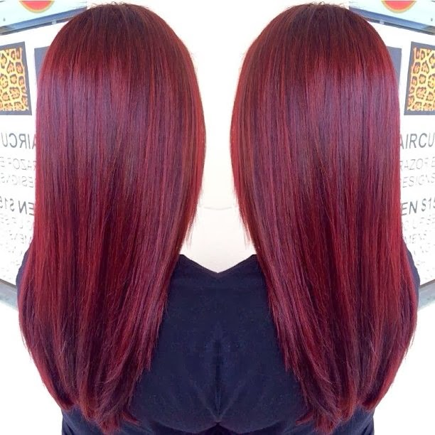 Have Dark Brown Hair Color Highlights Should Get Hair Color