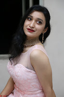 Sakshi Kakkar in beautiful light pink gown at Idem Deyyam music launch ~ Celebrities Exclusive Galleries 078.JPG