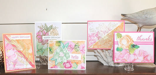 displays for annual catalogue launch 1