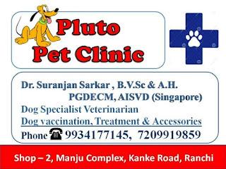 Pet clinic ranchi 9934177145