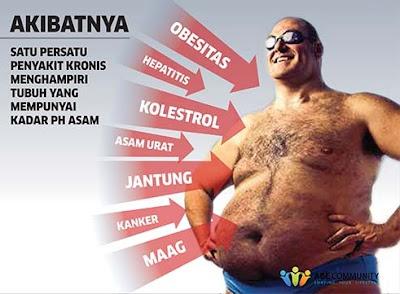 khasiat fiforlif untuk perut buncit