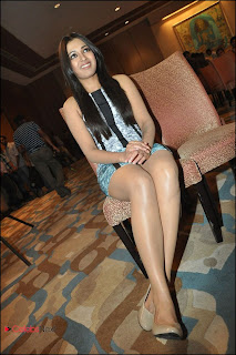 Catherine Tresa Pos at Iddarammayilatho Platinum Disc Function  0010.jpg