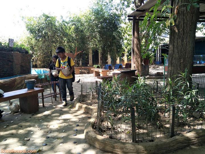 Langkawi Bird Paradise atau Langkawi Wildlife Park