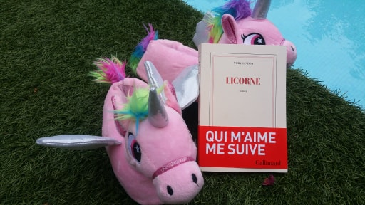 Licorne Nora Sandor avis chronique happybook happymanda