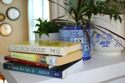 The Storied Mom Reading Challenge #storiedmom #cleanandcaptivating #readinglifestye #christianbooks #christianmoms #motherculture
