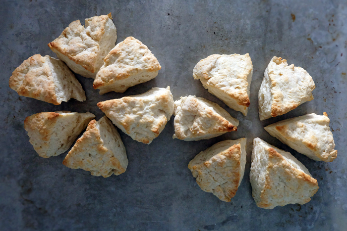 baked biscuits on sheet