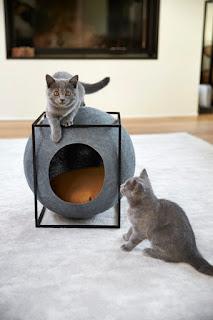 Moderno notranje pohištvo za muce in pse.