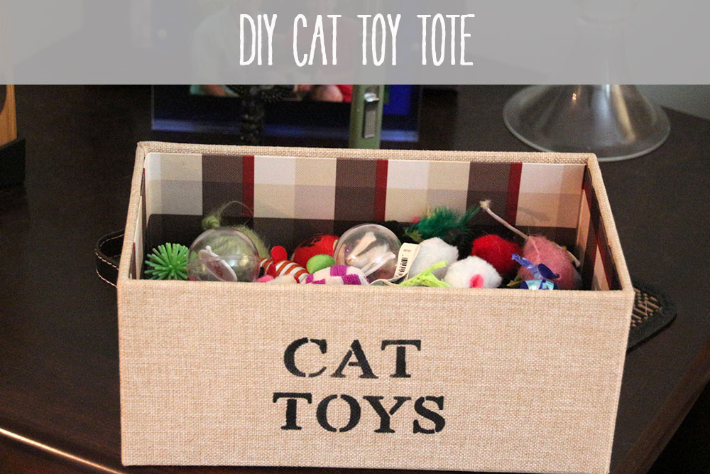 Diy cat toy tote rainstorms and love notes for Diy easy cat toys
