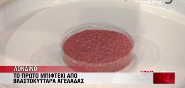 ΒΙΝΤΕΟ- Δοκίμασαν το μπέργκερ από βλαστοκύτταρα
