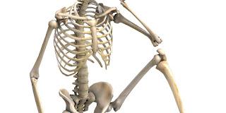 Bones dream meaning
