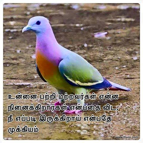 Life Tamil Tamil Quotes - Search Quotes