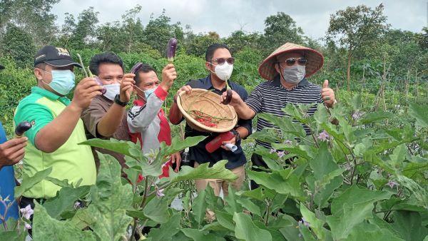 SKK Migas - PetroChina dan Bupat Panen Pertanian Organik di TPA Lubuk Terentang