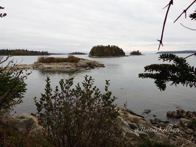 Upper Duck Pond, view