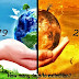 Essay On Global Warming | Global Warming effects