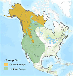 Geographic distribution grizzly in North America