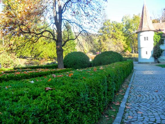 Чинадієво. Замок графа Шерборна. Парк