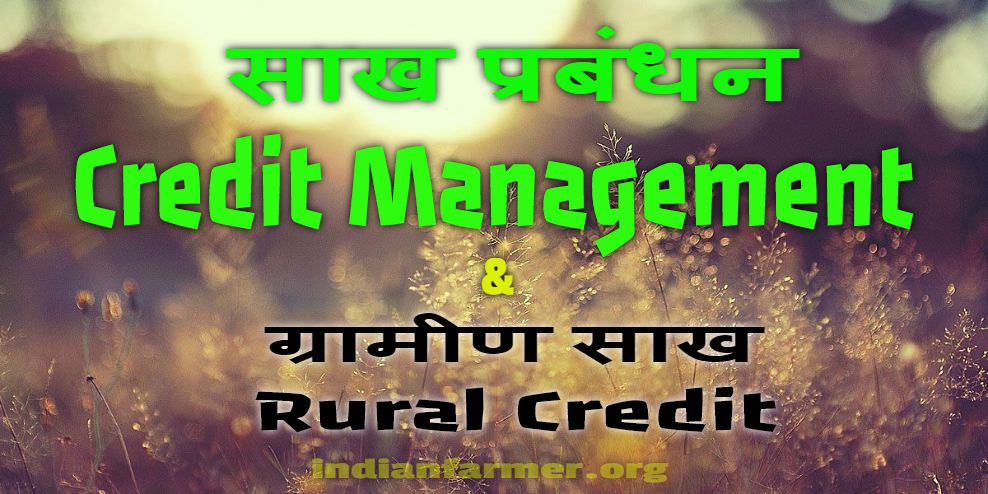 Sakh Prabandhan: Credit Management or Gramin Sakh: Rural Credit