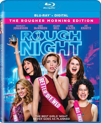 Rough Night 2017 Eng BRRip 480p 300Mb ESub