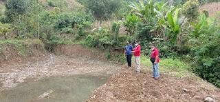 Kadis Pertanian Luwu Lakukan Monitoring
