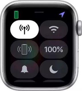 Arti Icon dan Simbol di Apple Watch-14