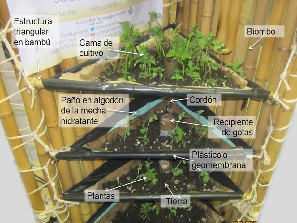 Biombos Verdes Proceso