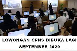 Lowongan CPNS Dibuka Lagi September 2020?