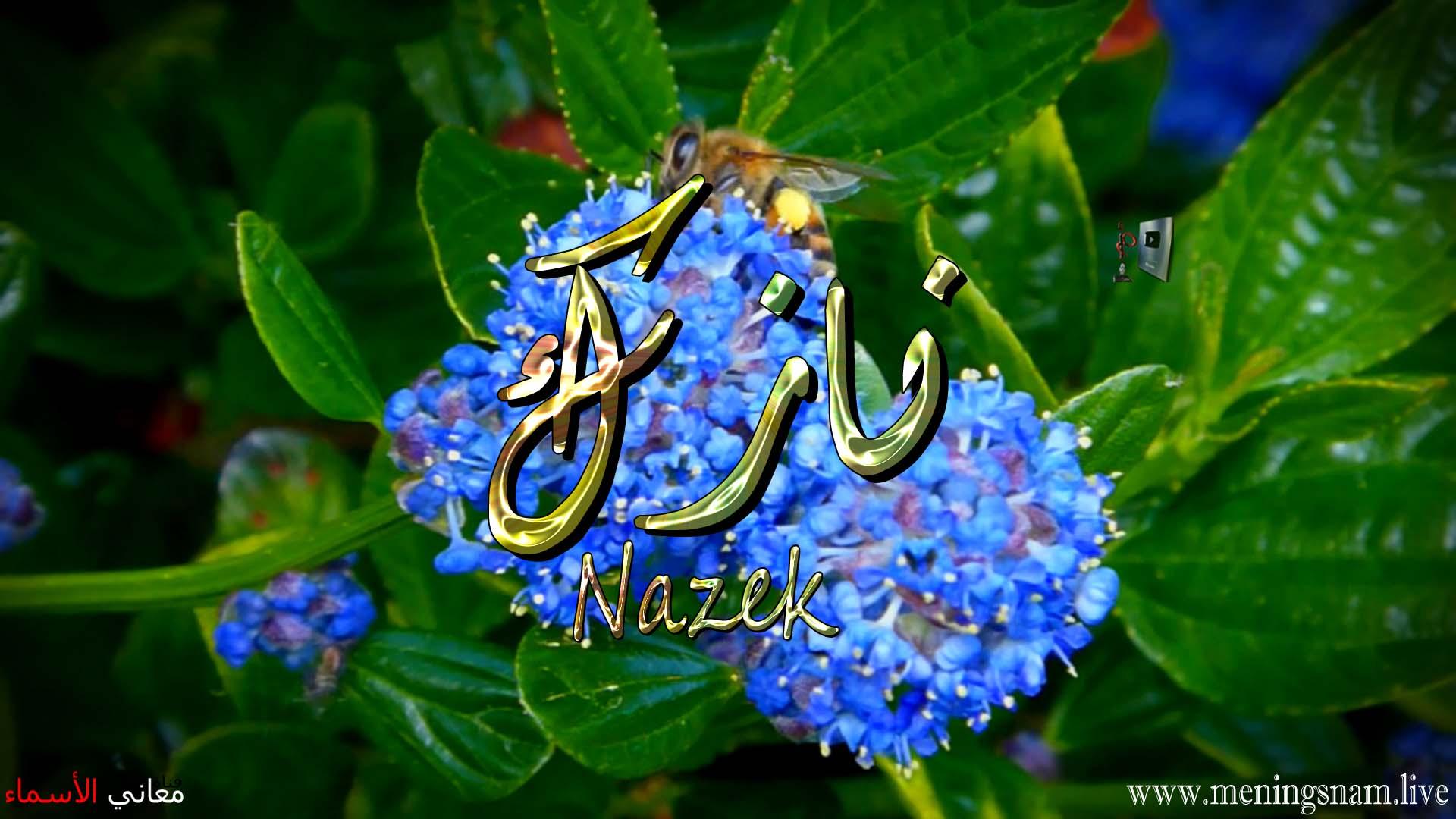 معنى اسم نازك وصفات حاملة وحامل هذا الاسم Nazek