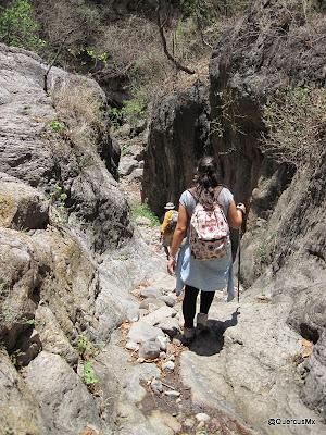 Micro cañón en la Barranca del Tecuán