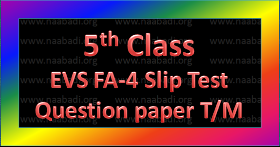 FA-4 5th Class EVS Slip Test Question Paper T/M