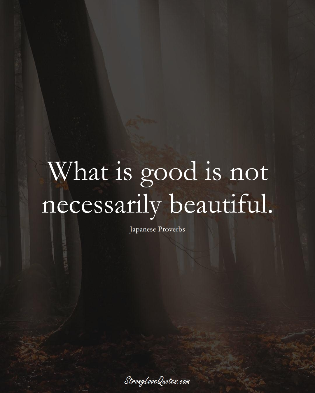 What is good is not necessarily beautiful. (Japanese Sayings);  #AsianSayings