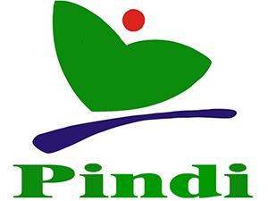 Lowongan Kerja di PT. Pindi Mulya Abadi - Karanganyar (IT Web Developer, IT Creative Content Creator, Staff Farmasi)