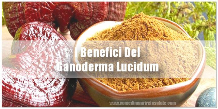 Ganoderma Benefici