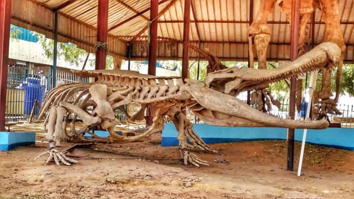Mundo Pré-Histórico: Sarcossuco, o crocodilo gigante