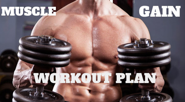 MUSCLE GAIN WORKOUT PLAN