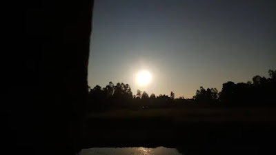 Some pictures of the afternoon sun