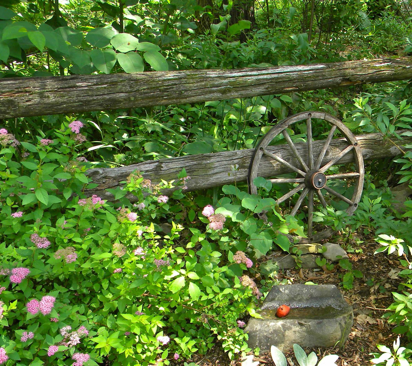 Near The Entrance The Gardener Had Placed A Wagonwheel Against A Rustic  Fence, With A Rock For A Birdbath. A Spirea Was Coming Into Bloom To  Complete The ...