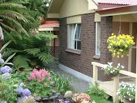 5 Tanaman Hias yang Pas Untuk Percantik Pekarangan Rumah