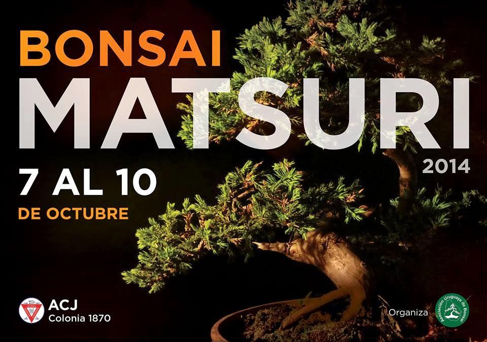 http://aubonsai.blogspot.com/2014/10/bonsai-matsuri-2014.html