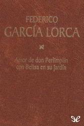 Libros gratis Amor de don Perlimplín para descargar en pdf completo