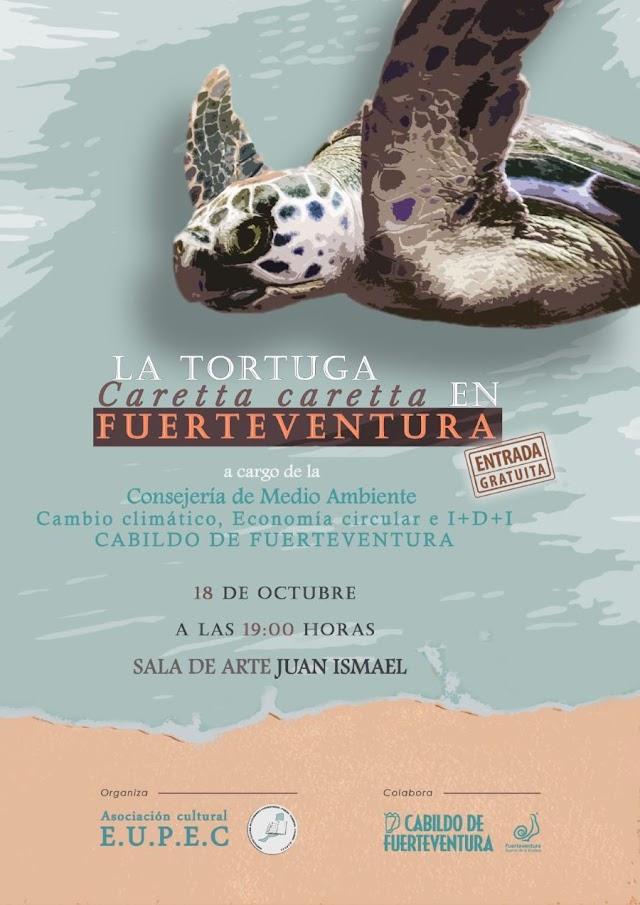 Fuerteventura.- Consejería de Medio Ambiente y Cambio Climático del Cabildo impartirá mañana una charla sobre la tortuga caretta caretta