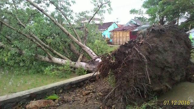 Angin Puting Beliung di Batang
