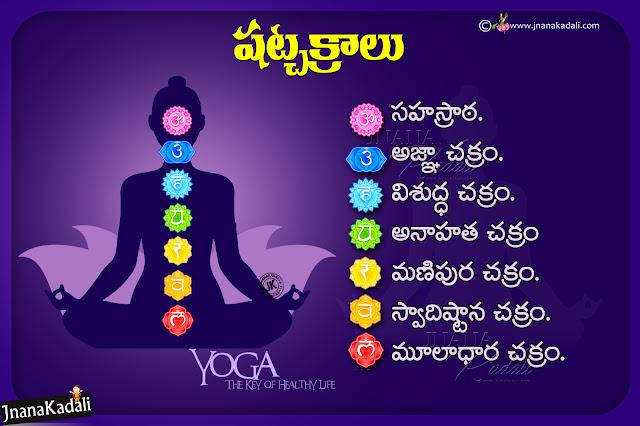 telugu yoga information, shat chakras information in telugu, nice pictures of yoga with information in telugu