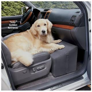 blocos para cães em veículos
