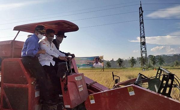 Ikuti Panen Raya di Sicincin, Mentan Syahrul Yasin Limpo: Padangpariaman Lumbung Pangan Sumatra Barat