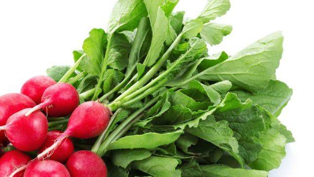 Best Home Remedies for Radish Greens