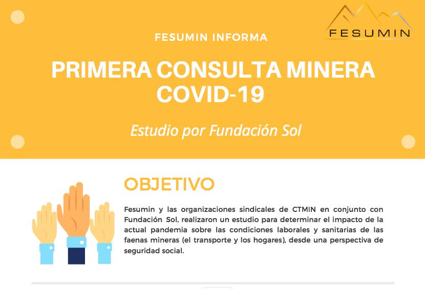 Estudio sobre el impacto de Covid 19 en la minería y sus trabajadores y trabajadoras