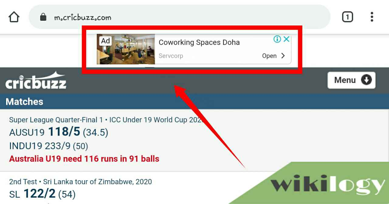 How does Cricbuzz make money?, How much does Cricbuzz Earn Daily